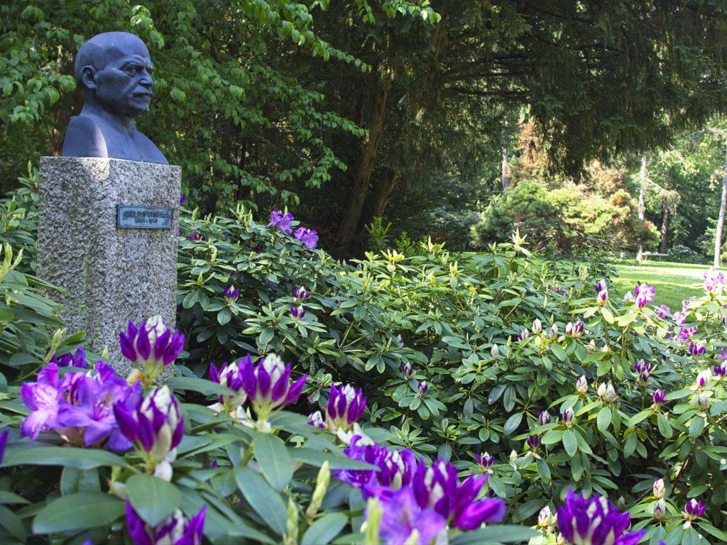 Carl-von-Weinberg-Park